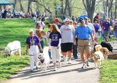 Bark For Life of Sacramento  Saturday, June 30 10:00a to 1:00p  at Southside Park Amphitheater, Sacramento, CA