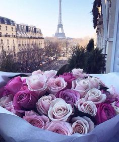 Картинка с тегом «paris, flowers, and rose»