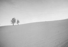 Inverno all'Alpe di Rittana #shapes #nature #provinciadicuneo #piemonte #italy