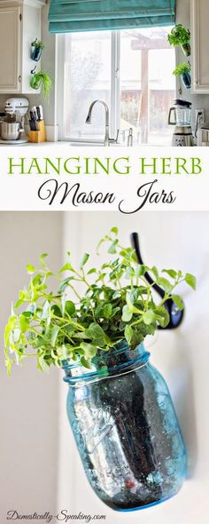 Hanging Fresh Herbs in Mason Jars. Cute idea! #hangingherbgardens