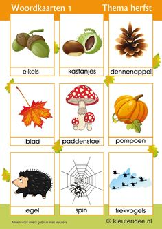Woordkaarten 1 voor kleuters, thema herfst, juf Petra van kleuteridee,  free preschool printable. Autumn Crafts, Fall Crafts For Kids, Diy For Kids, Autumn Activities, Toddler Activities, Fall Projects, Projects To Try, Pink Christmas Decorations, Dutch Language