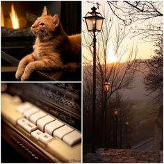 ** Buona serata ~ have a nice evening ~ Guten Abend ~ Buenas tardes ~ Boa tarde ~ Kalispera ~ Miłego wieczoru ~ Добра вечер ~ Dobra noć ~ Jó estét ~ Dobrej nocy ~ Bonne soirée ~ Dobra vecer ** #november #charmeandmore