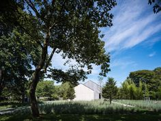 Gallery of House in the Lanes / MB Architecture - 10