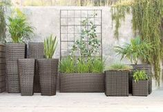 If your garden is looking a little worse for wear after the winter, update it with some stunning greenery and stylish pots!