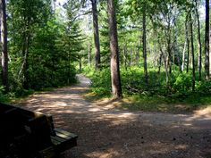 lake bemidji state park - Google Search
