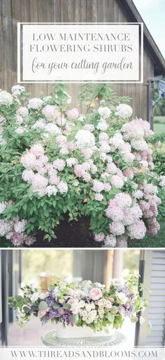 Urban Garden Low Maintenance Flowering Shrubs for your Cutting Garden - A list of low maintenance flowering shrubs that are great for your regular garden with year round interest and for cutting too throughout the seasons. Low Maintenance Garden Design, Low Maintenance Landscaping, Low Maintenance Plants, Cut Flower Garden, Flower Farm, Cut Garden, Easy Garden, Garden Art, Ideas Para Decorar Jardines