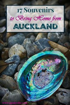 Auckland Shopping Tips: 17 Souvenirs to Bring Home.