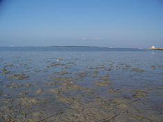 Bassa Marea (riserva dello Stagnone a Marsala)