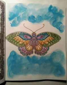 Ivy And The Inky Butterfly Johanna Basford Adult Coloring Prismacolor Premier