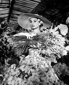 Bilder von Audrey Hepburn