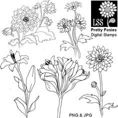 These hand drawn pen and ink sketches of poppies begged to be colored with markers or watercolors and added to a special card or scrapbook page. You get 5 original illustrations in PNG and [...]