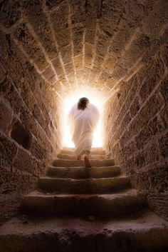 The Spirit of God, who raised Jesus from the dead, lives in you. And just as God raised Christ Jesus from the dead, he will give life to your mortal bodies by this same Spirit living within you. (Romans 8:11)