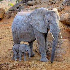 Instagram media by dswt - Like mother, like daughter! #DSWT graduate orphan…