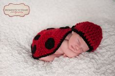 Newborn Hat and Lady Bug Photo Prop by MissWishGarden on Etsy, $42.00