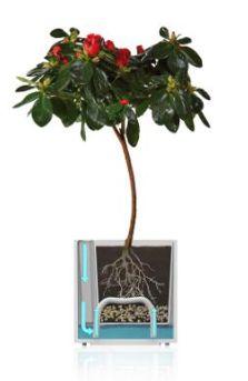PĚSTEBNÍ POTŘEBY | Samozavlažovací květináč CUBICO 9 x 9 x 13,5 cm - fialový | Orchideje, pokojové rostliny, masožravé rostliny, exotické rostliny