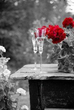 red flowers,,,color splash,,,