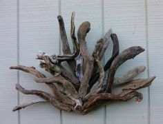 Driftwood Sculpture Wall Hanging Driftwood by BurlgirlCreations