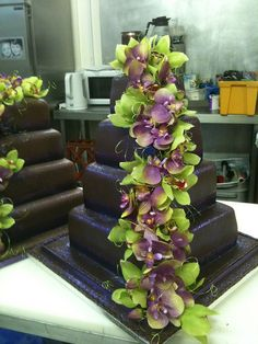 Chocolate and Green Orchids cake