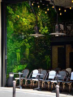MUR VEGETAL PNG créateur de mur Vegetal extérieur ou intérieur et mur végétalisé stabilisé dans toute la France et l'Europe.