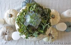 Succulents look good no matter what season it is, so why not use them to up your fall decor?  Get the tutorial at Meadow Lake Road.   - CountryLiving.com