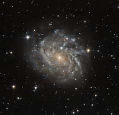 This little-known galaxy, officially named J04542829-6625280, but most often referred to as LEDA 89996, is a classic example of a spiral galaxy.