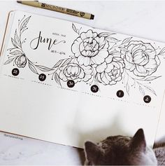 June bullet journal monthly theme cover page ideas, beautiful peonies and monthly layout by jannplansthings