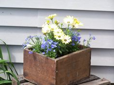 More flowers in old wood boxes