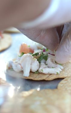 What better way to whet the appetite on a hot autumn day in Southern California than with tangy, flavorful red snapper ceviche? Served on a fresh house-made tostadita for that added crunch, it's a refreshing way to kick off today's warm wedding festivities.   More: https://www.sohotaco.com/2016/11/13/assembling-red-snapper-ceviche-on-a-warm-autumn-day/