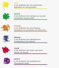 De 6 drijfveren. De mijne zijn (in volgorde van mate van belangrijkheid) oranje, rood en paars.