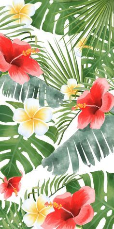 36 Trendy ideas for flowers drawing wallpaper iphone Iphone Wallpaper Tropical, Summer Wallpaper, Cute Wallpaper Backgrounds, Trendy Wallpaper, Aesthetic Iphone Wallpaper, Flower Wallpaper, Pattern Wallpaper, Cute Wallpapers, Aesthetic Wallpapers