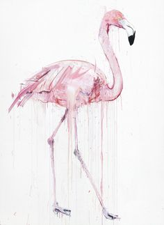 http://www.loughrangallery.co.uk/artists/dave-white/dave-white-flamingo-i.aspx