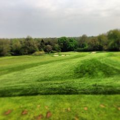 #13th #amexwgc #par3 #sun #golf  Photo by reeceharvo