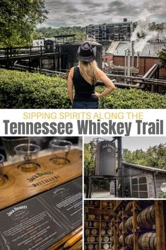From family-run operations making moonshine and rye, to big names like Jack Daniels and George Dickel, you can find it all along the Tennessee Whiskey Trail. Townsend Tennessee, Chattanooga Tennessee, Tennessee Usa, Gatlinburg Tn, Tennessee Cabins, Tennessee Girls, Whiskey Tour, Whiskey Trail, Bourbon Tour