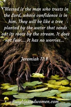 No fears.... No worries...... Confidently trust God with your life. #faith #anxiety #fear #trust #Jesus