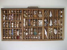 printer's tray filled with shells