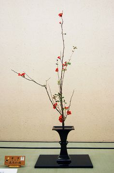 Ikebana Ikenobo | Flickr - Photo Sharing!