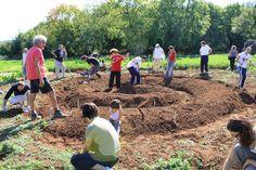 Il wwoofing consente di trascorrere un periodo ospiti di un'azienda agricola condividendo l'esperienza di lavorare e vivere insieme ai contadini. Ecco dove!