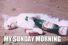 My Sunday Morning...