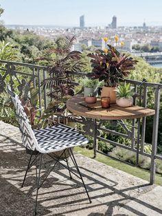 déco balcon Calathea, Outdoor Tables, Outdoor Decor, Backyard, Patio, Decoration, Terrazzo, Outdoor Furniture Sets, Dining Room