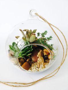 Hanging Orb Garden Auckland, Ethnic Recipes, Garden, Food, Garten, Lawn And Garden, Essen, Gardens, Meals