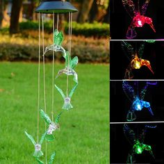 Solar Color Changing LED Hummingbird Wind Chimes Home Garden Decor Light Lamp US | eBay