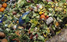 Στα σκουπίδια καταλήγουν 1,3 δισ. τόνοι τροφίμων κάθε χρόνο παγκοσμίως - http://www.kataskopoi.com/87713/%cf%83%cf%84%ce%b1-%cf%83%ce%ba%ce%bf%cf%85%cf%80%ce%af%ce%b4%ce%b9%ce%b1-%ce%ba%ce%b1%cf%84%ce%b1%ce%bb%ce%ae%ce%b3%ce%bf%cf%85%ce%bd-13-%ce%b4%ce%b9%cf%83-%cf%84%cf%8c%ce%bd%ce%bf%ce%b9-%cf%84/