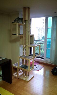 DIY cat tower cat tree #cat tree