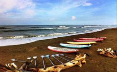 Boards and paddles just waiting - Dave Kalama To Host, KalamaKamp  #sup #paddleboard #standuppaddle