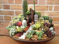 Magical DIY Succulent Fairy Garden Ideas - Decomagz - Sukkulenten-Minigarten You are in the right place about Cactus wallpaper Here we offer you the most - Succulents In Containers, Cacti And Succulents, Planting Succulents, Planting Flowers, Cactus Plants, Succulent Gardening, Garden Terrarium, Succulent Terrarium, Succulent Ideas