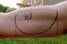Fibonacci tattoo. I especially like the way the lines hang out over the borders