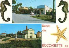 Boccasette - Porto Tolle (RO)