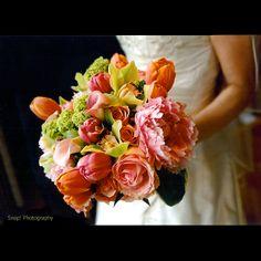 Google Image Result for http://3.bp.blogspot.com/_U56yhynHDXY/TRnQtIU7SNI/AAAAAAAACbE/YdabbdIp7sE/s1600/orangegreenpink.jpg