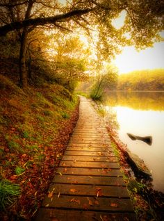 lake walk in autumn