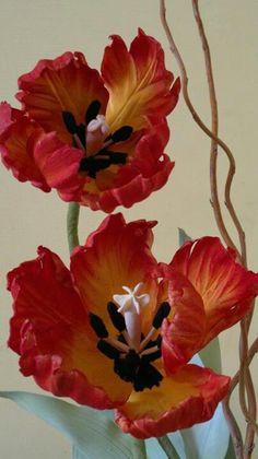 Robert Haynes' Sugar Flower Studio